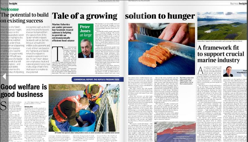 Times Insight Scottish salmon #2