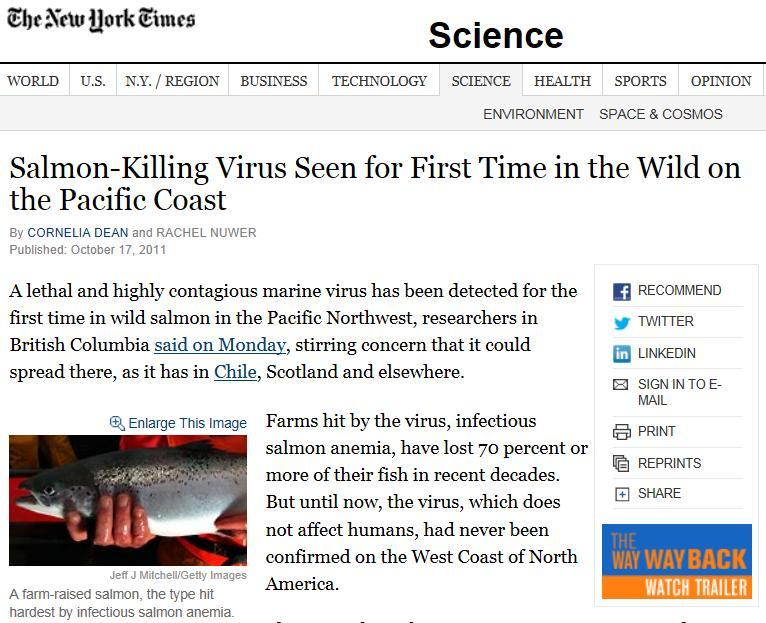 NY Times 2011 on ISA #3