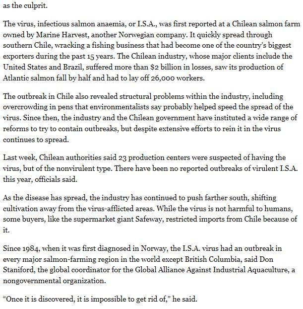 NY Times 2011 Cermaq #2