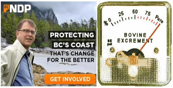 NDP protect coast bovine
