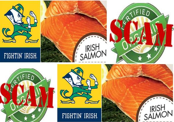 Ireland organic salmon scam