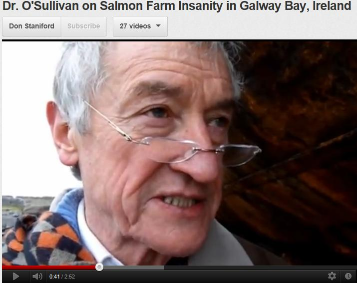 Roderick O'Sullivan video