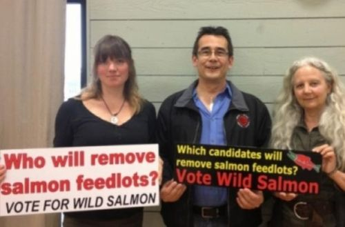 Vote wild salmon which candidates