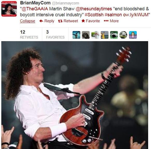 Brian May Tweet on seals with photo