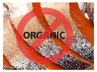 Organic No