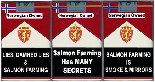 3 pack secrets & lies