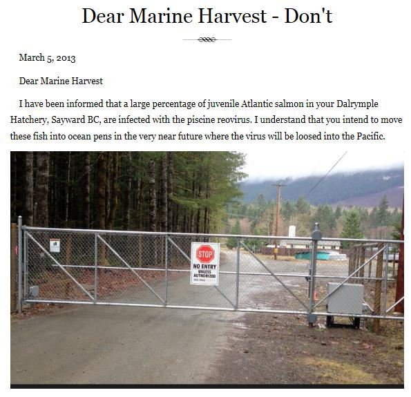 Dear Marine harvest dont
