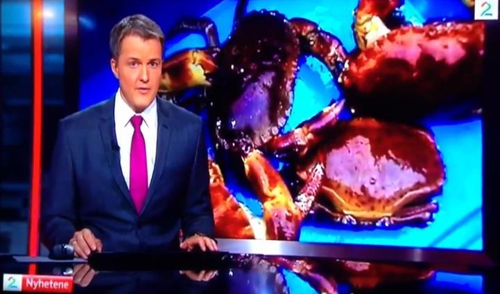 TV2 crabs #3