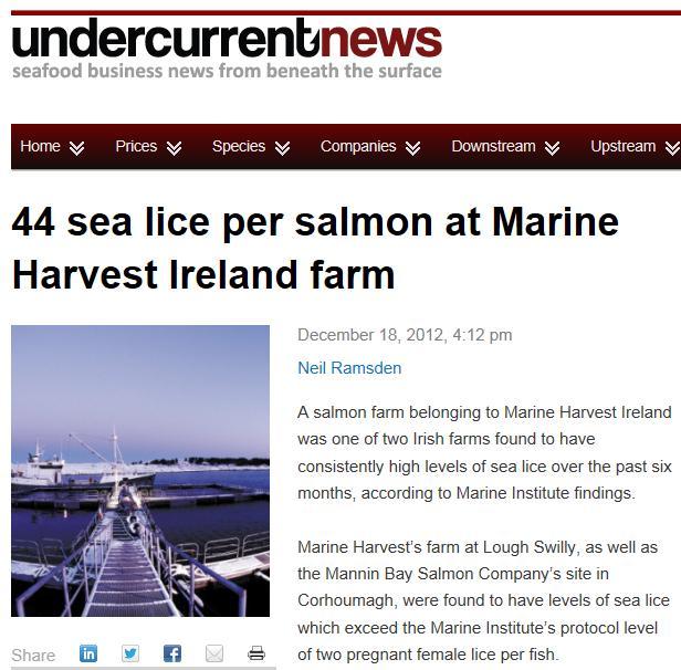 MH sea lice Ireland