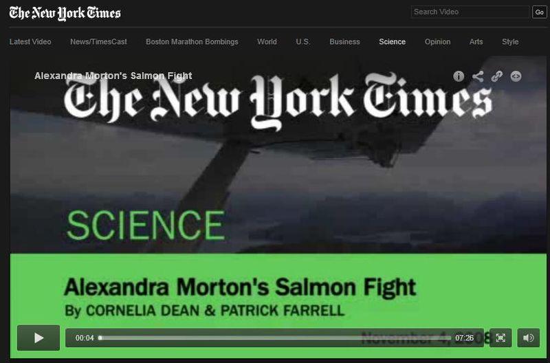 NY Times 2008 Alexandra's salmon fight