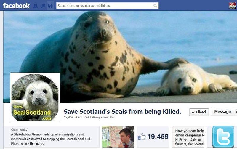Facebook seal page #1