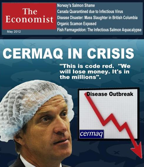 Cermaq in crisis #1