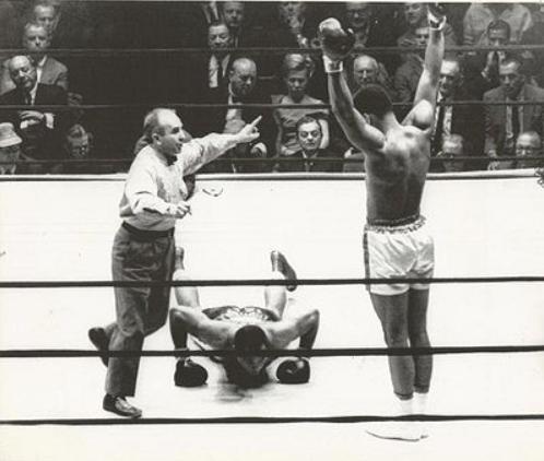 Ali knockout #2