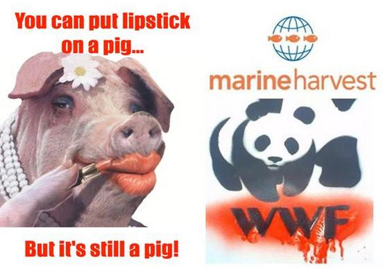 Lipstick MH WWF