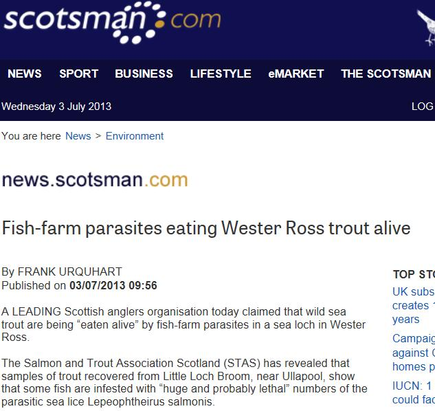 Scotsman on sea lice July 2013