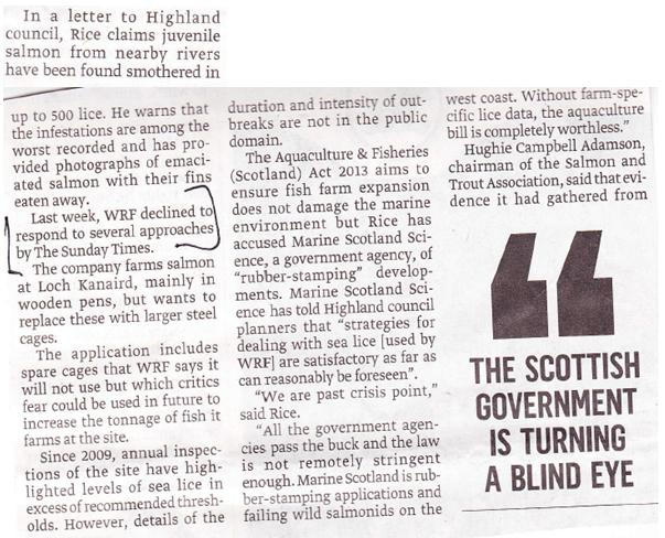 Sunday Times on Rice vs WRF Loch Kanaird 7 July 2013 #3