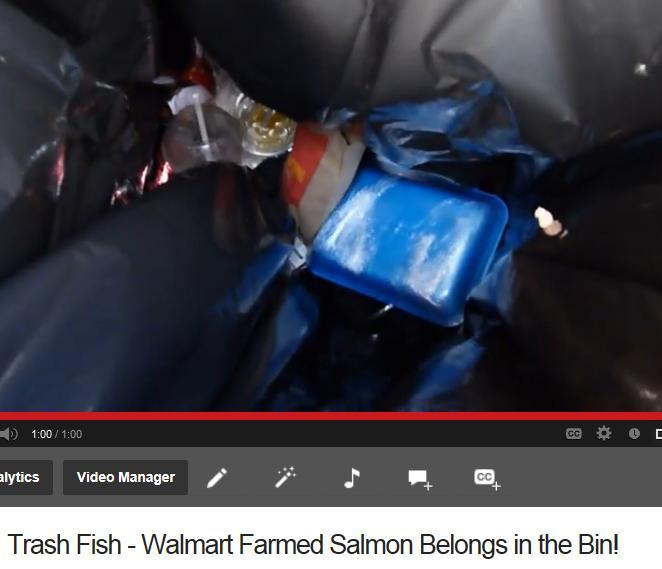 Video #2 Don trash #2