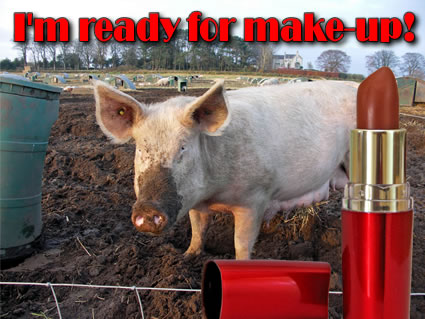Lipstick on a pig #10 ready for make up