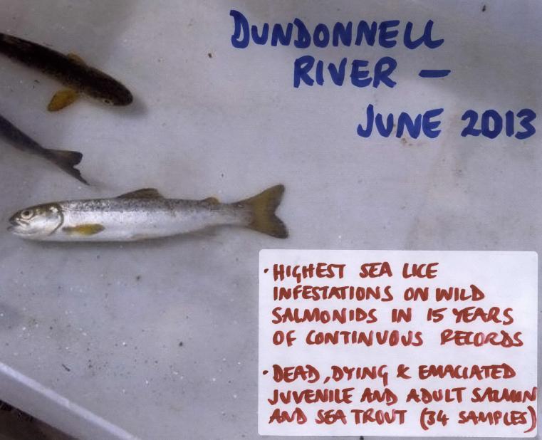 Loch Kanaird objection Donald Rice June 2013 #5 photos