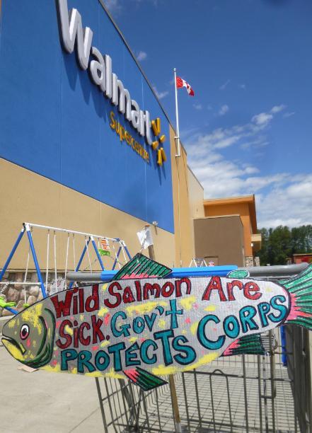 Walmart photo #8 sick corps