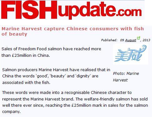 Marine Harvest article 2013