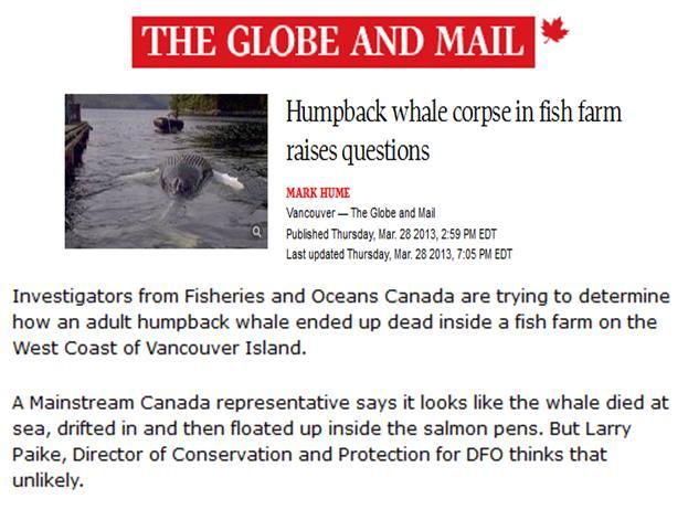 Whales #9 G&M