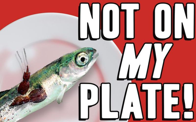 Not on my plate poster