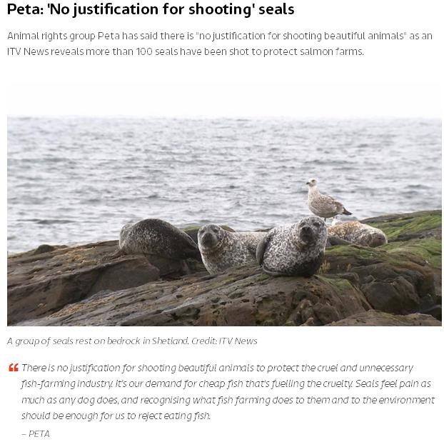 ITV News You Tube #5 Peta