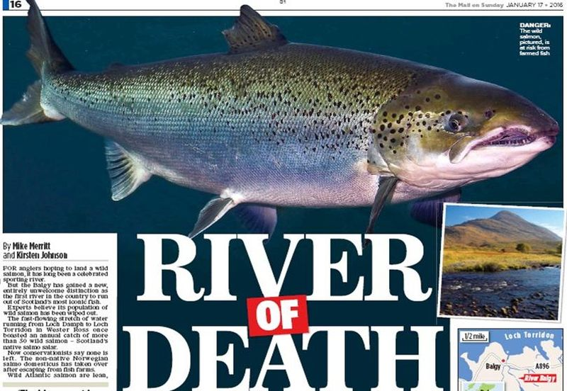 Mail on Sunday 18 Jan 2016 River of Death #1