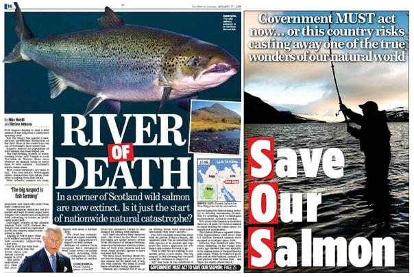 Mail on Sunday 18 Jan 2016 Double Thumbnail