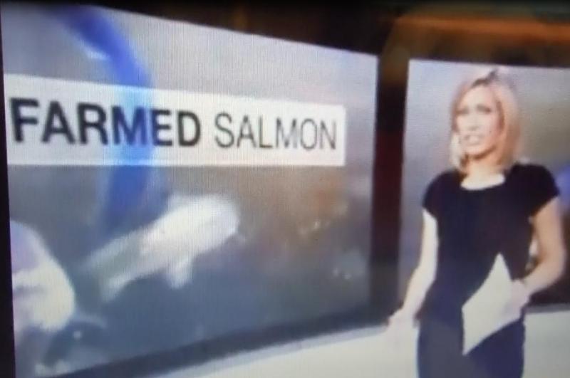 BBC News 6 Oct 2016  video shot