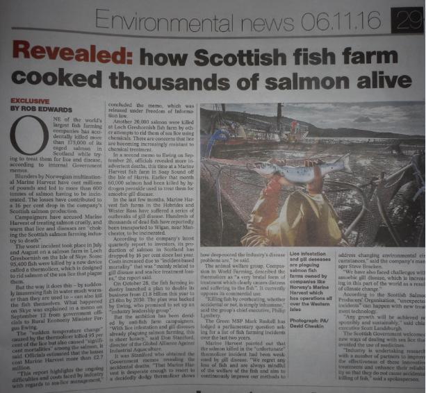 Sunday Herald 6 November article in full