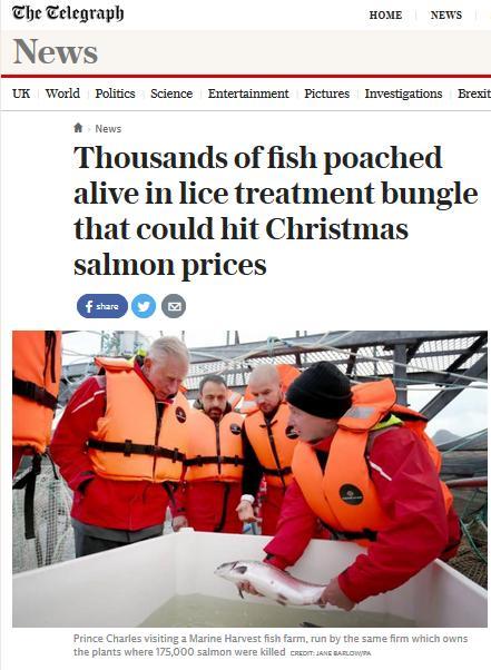 Daily Telegraph 18 Nov 2016 #1