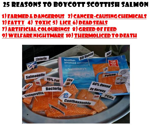 25 Reasons to Boycott Scottish Salmon #1 front cover