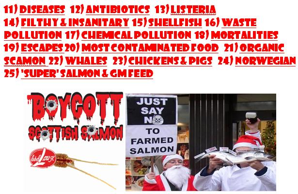 25 Reasons to Boycott Scottish Salmon #2
