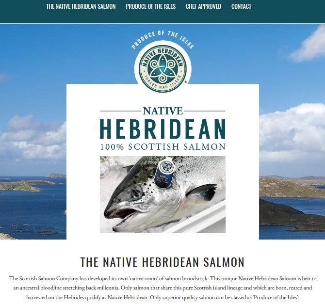 Hebridean Salmon