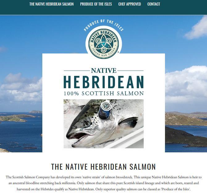 Hebridean Salmon