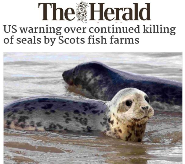 Herald 24 April 2017 #1