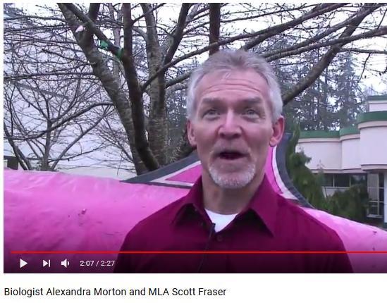 Scott Fraser video