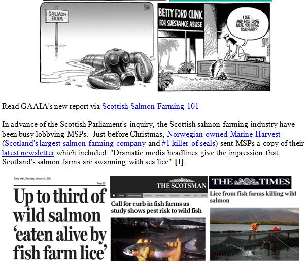PR Scottish Salmon Farming 101 #4