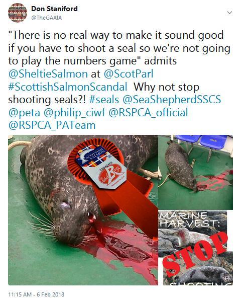 Tweet SP #6 seals