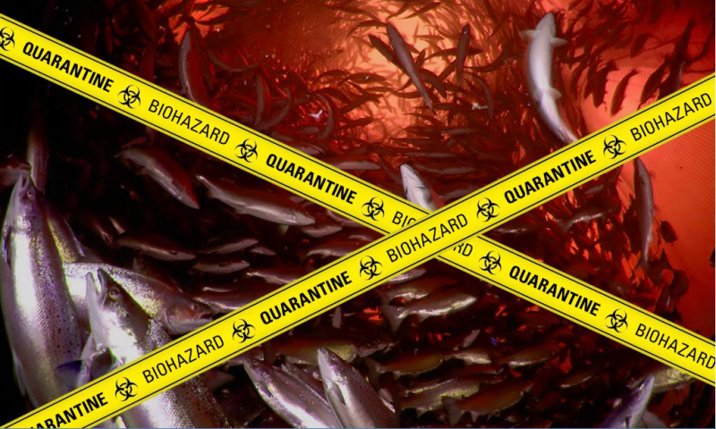 Poster #2 Biohazard Quarantine Blood Red low res