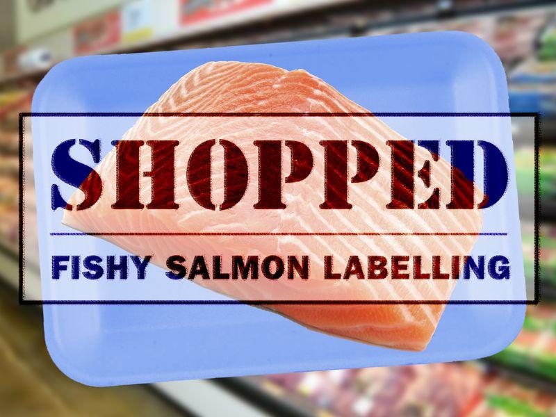 Shopped logo med res