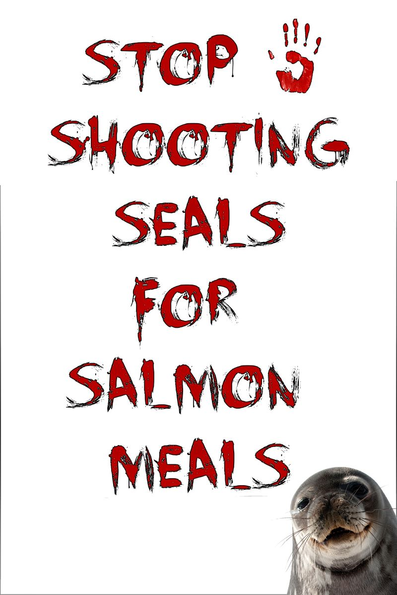Sign #3 stop shooting seals for salmon meals
