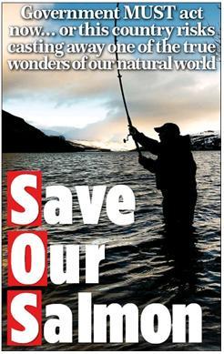 Mail on Sunday 18 Jan 2016 Bruce Thumbnail
