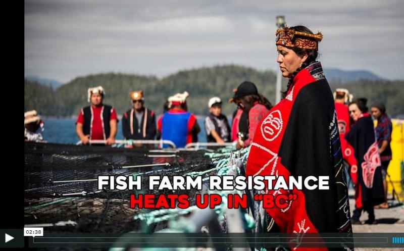 Resistance video