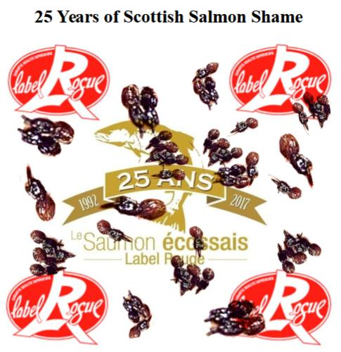 25 Years of Scottish Salmon Shame # LR