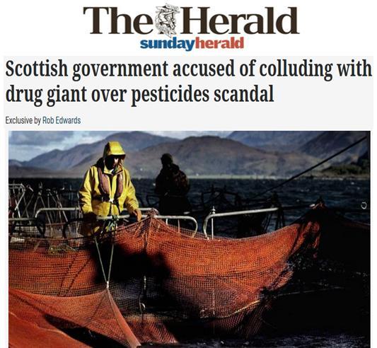 Sunday Herald 4 June 2017 #1