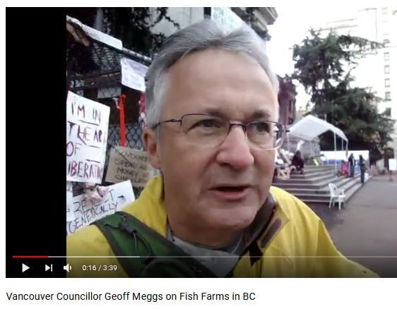 Meggs video
