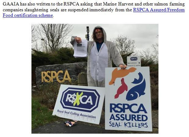 PR RSPCA in Firing Line over MH 8 Nov 2017 #5